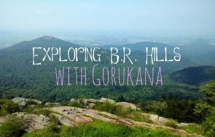 where to stay in br hills gorukana