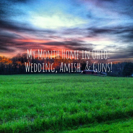 ohio country guns and amish