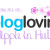 bloglovin travel blog