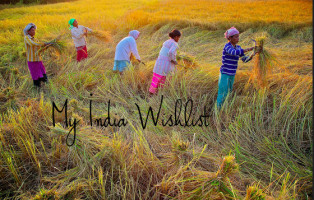 best cities in india wishlist