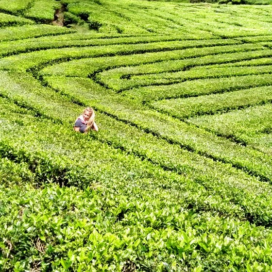 what to do in southern bandung
