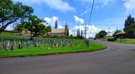 guide to maui upcountry