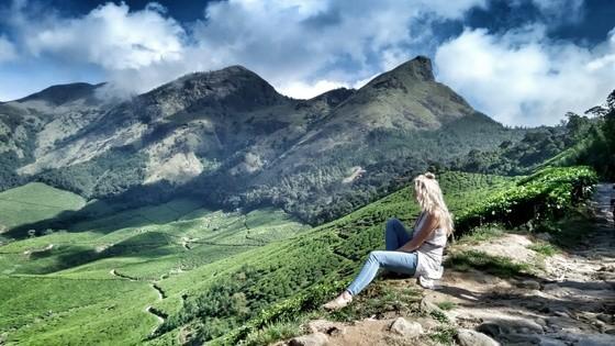 kerala tea fields18