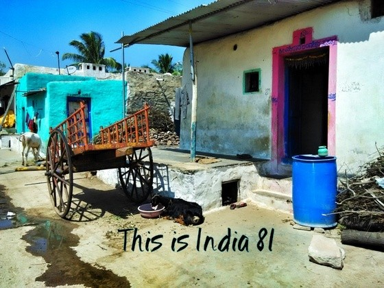 this is india 81