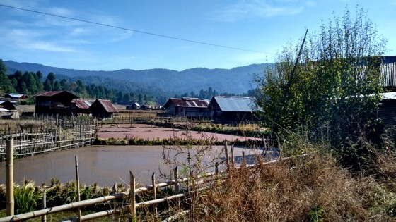 ziro valley tribals