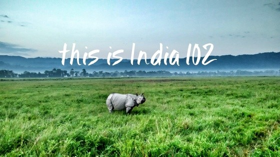 This is India! 102