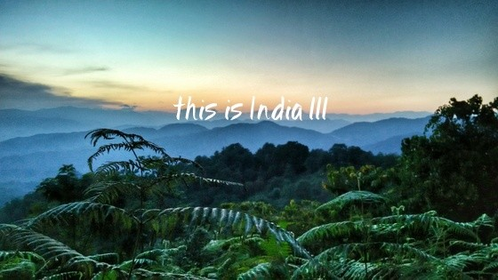 This is India! 111
