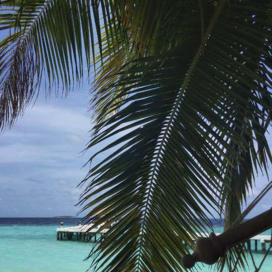 Maldives: How to Honeymoon While Backpacking Asia