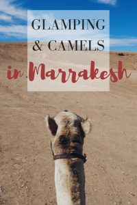 Get the Moroccan Desert Experience Without the 10 Hour Ride to the Sahara