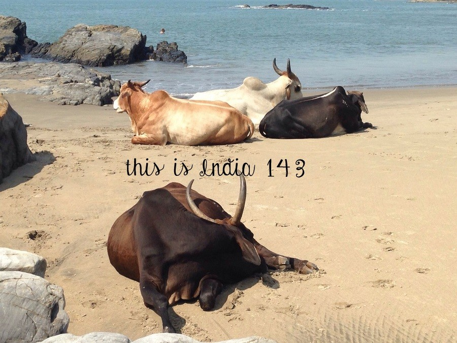 This is India! 143