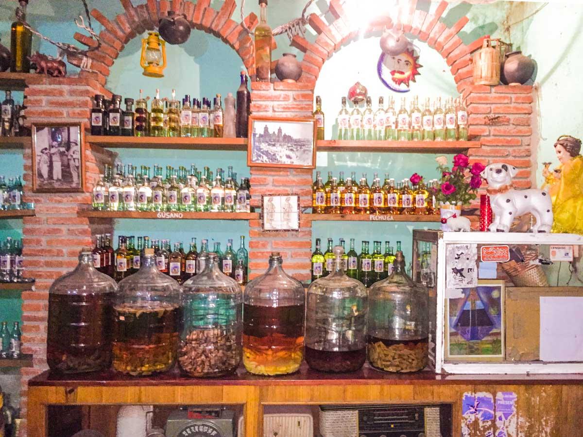 mezcal shop oaxaca mexico