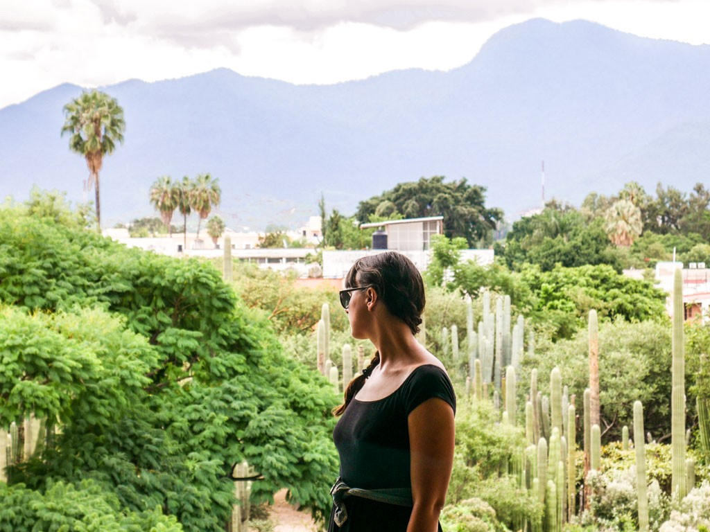 oaxaca tours and day trips