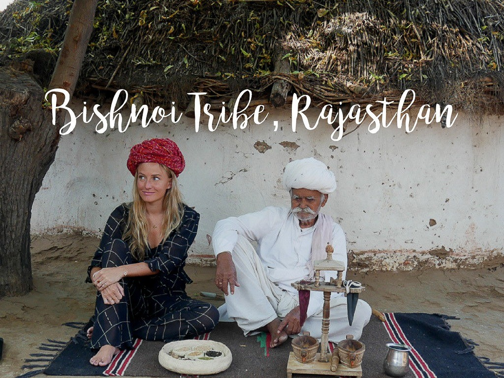 Tribals in India: How to Visit the Bishnoi Village near Jodhpur & What to Expect