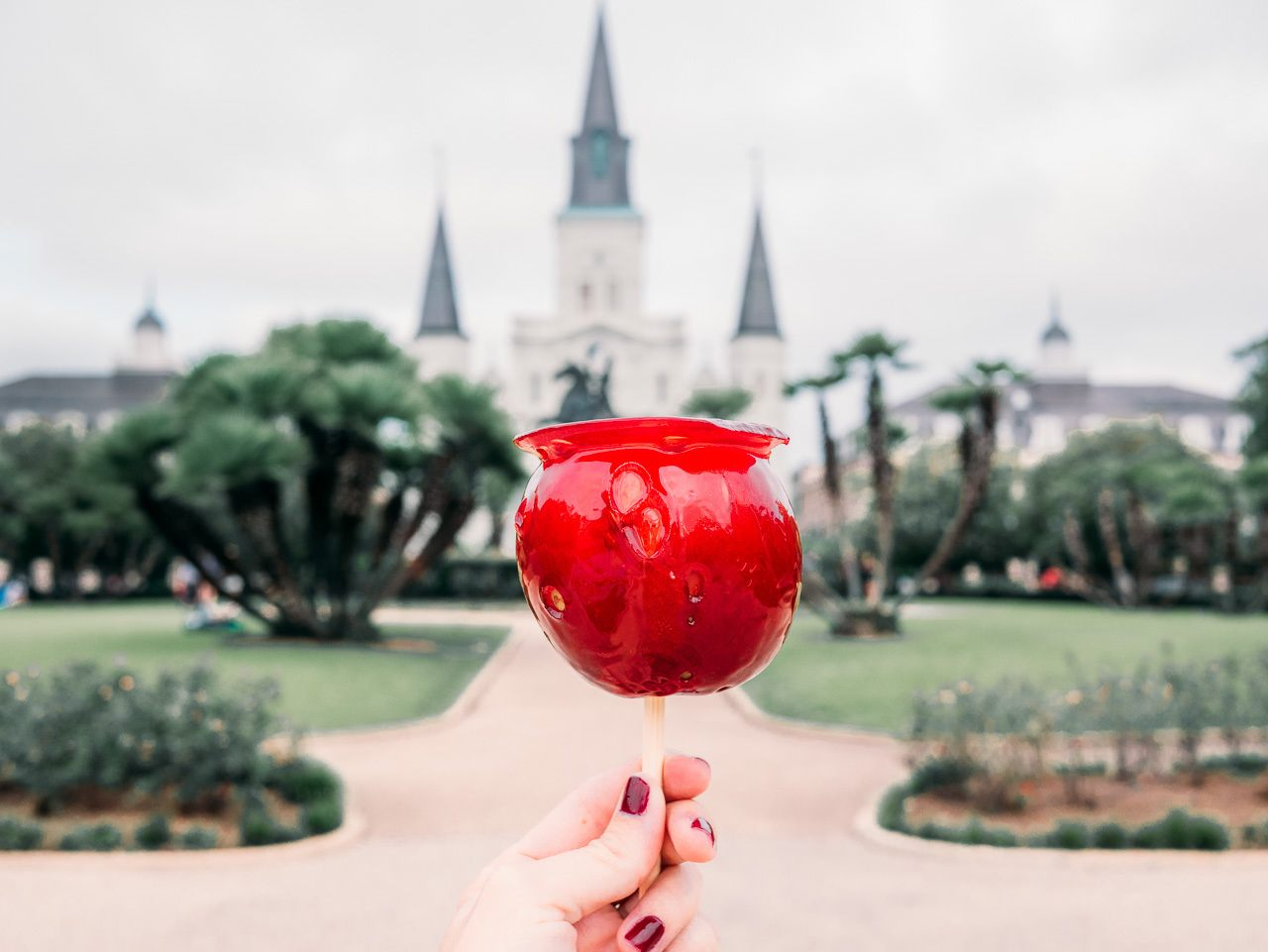 experiences in new orleans