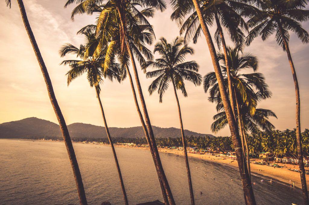 5 Best Beaches in Goa for Nightlife