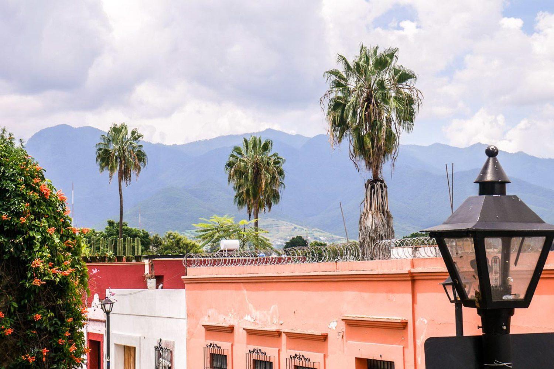 Oaxaca Skyline (Brooklyn Tropicali)