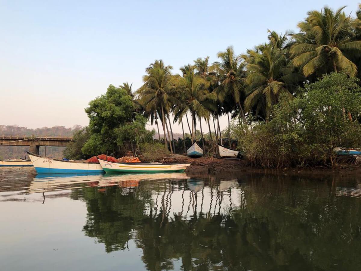 Boat Trip, Agonda, India