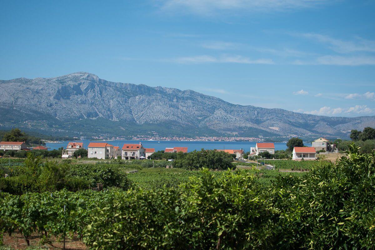Lumbarda Vineyards, Croatia