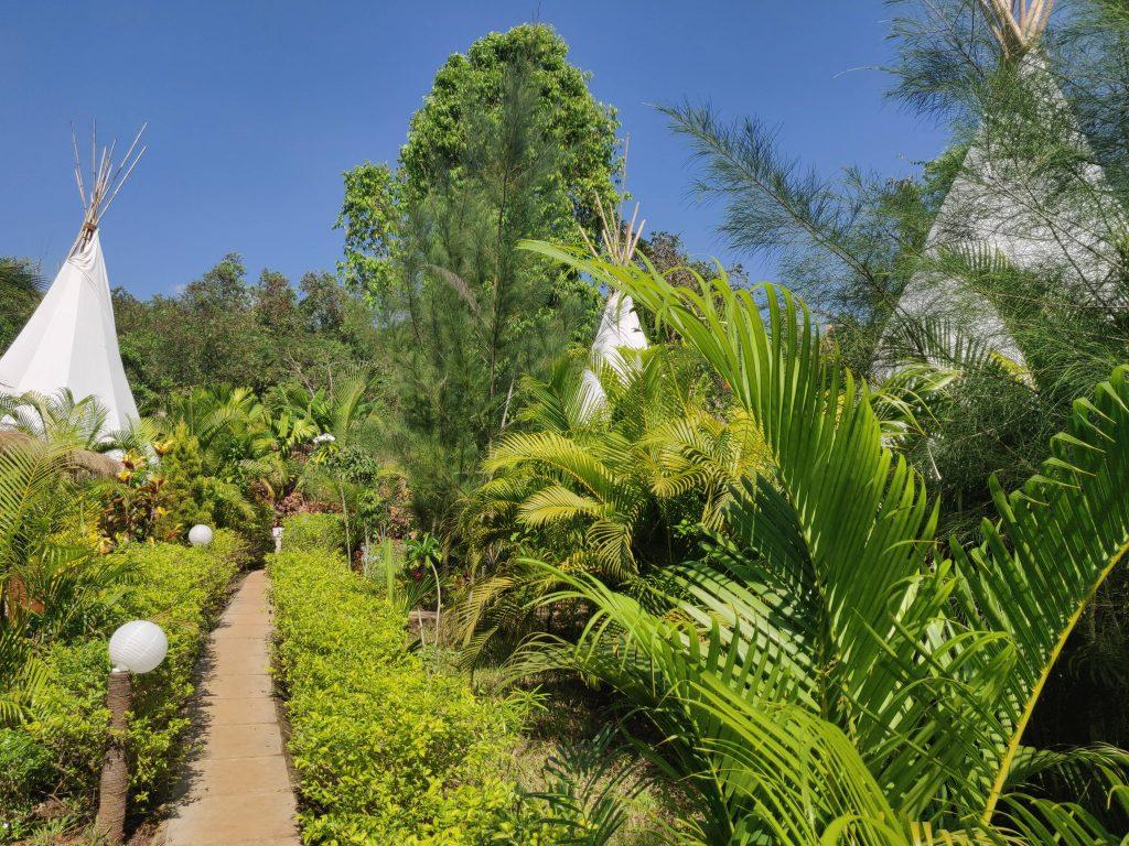 WigWam Garden