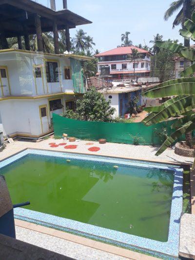 Dirty Pool Goa