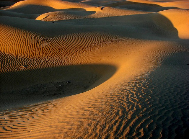 thar desert india, should i go to india