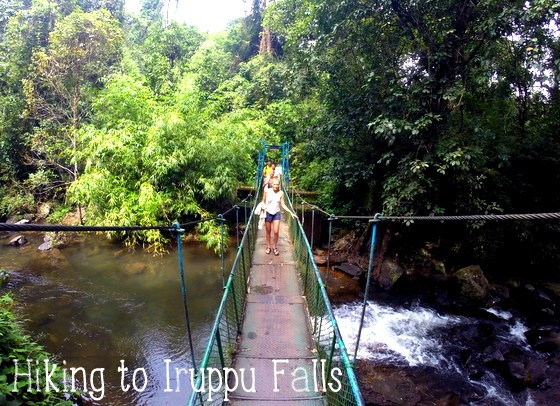 backpacking coorg iruppu falls