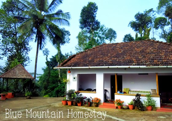 Touring Coorg Blue mountain homestay