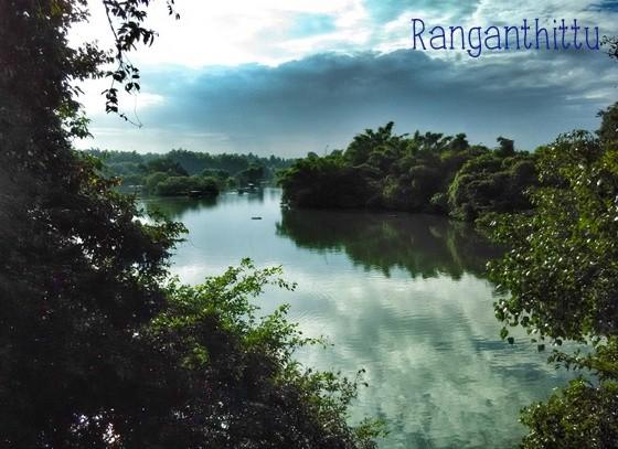 Srirangapatna  Ranganthittu