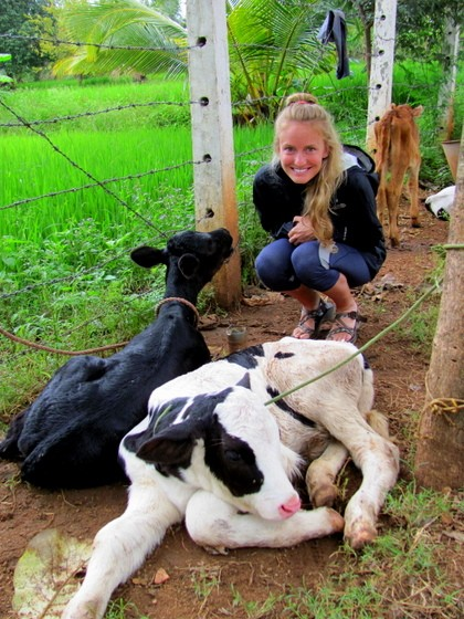 oxygen acres organic cheese farm
