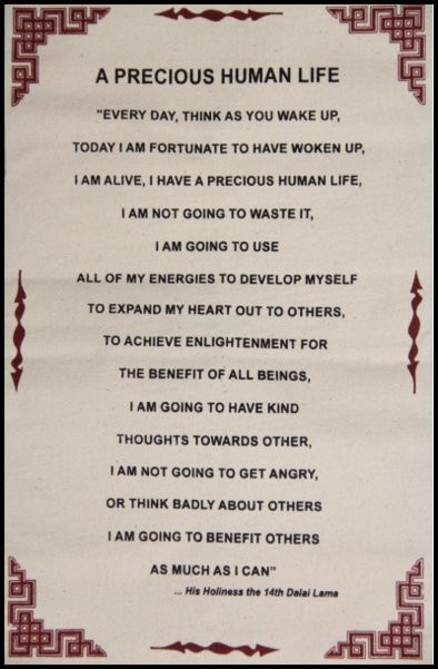what the dalai lama taught me