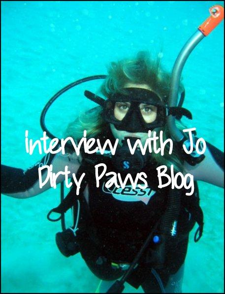 dirty paws blog