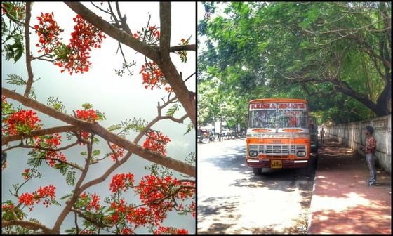 fort kochi cochin kerala locals